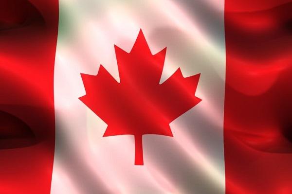加拿大枫叶卡